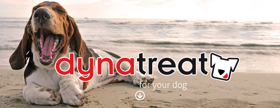 dynatreat dog