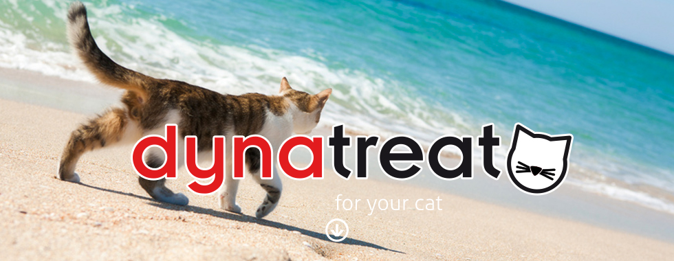 dynatreat cat